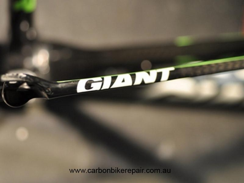 Giant TCR seat stay green after